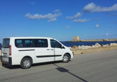 Agenzia/operatore Turistico Transfer Trapani Service
